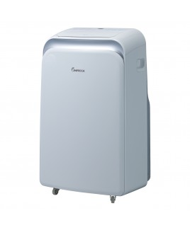 12,000 BTU/h Dual Hose Portable Room Air Conditioner